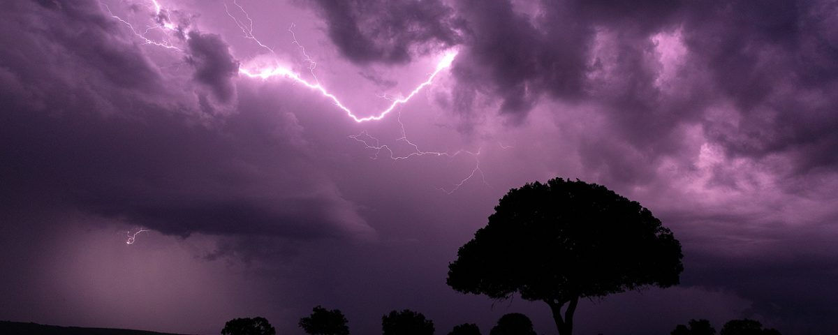 Purple lightning and silhouetted tree